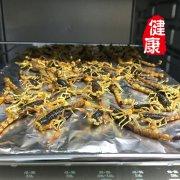 蝎子的吃法大全,微波炉烘焙子蝎子的做法和步